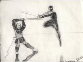 Samurai And Ninja by dchmelik