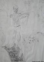 Archer Darwin by dchmelik