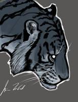 Tiger by Atrocias