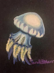 Rise of the Rhizostoma Puloma  by Alice5130
