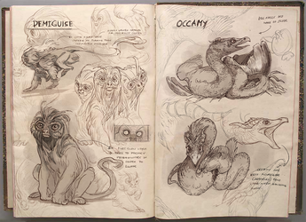 A Field Guide to The Demiguise and The Occamy by aignavus