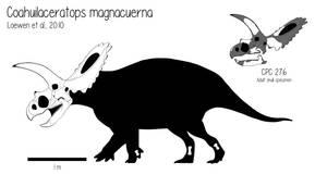 Coahuilaceratops magnacuerna by Crizz24