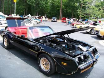 '79 Convertible by DetroitDemigod