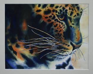 Leopard by Sisyphus-Child