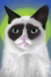 Grumpy Cat Speedpaint by spunionring