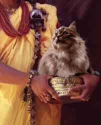 Hymalian Cat by maximoos