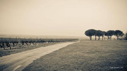 Foggy landscape by cyrilnovello