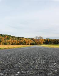 Autumn Road by halfpastoctober