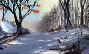 Winter Path by jjpeabody