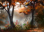 Fall Morning by jjpeabody