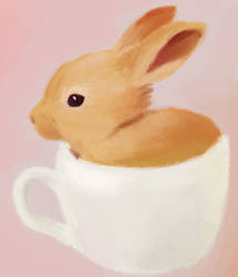 Teacup Bunny by Teh-Lady-Randomness