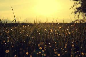 daydreaming by paulili14