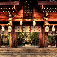 Minatogawa-Jinja by Tim-Wilko