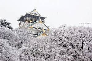 Osaka Castle in the snow by Tim-Wilko