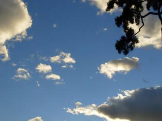 Cielo by suburbantrain