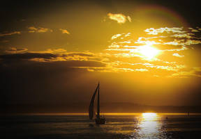 a golden evening by doverby