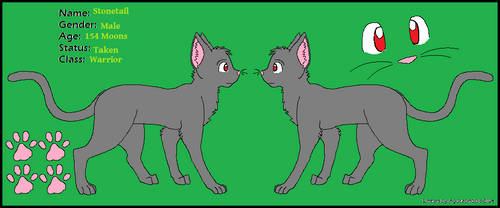 Stonetail's reference sheet :Gift: by xXWishdreamXx