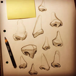 Noses by ketanpatelart