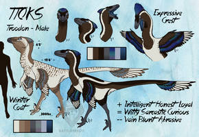 Ttoks Reference Sheet by Battleferrets