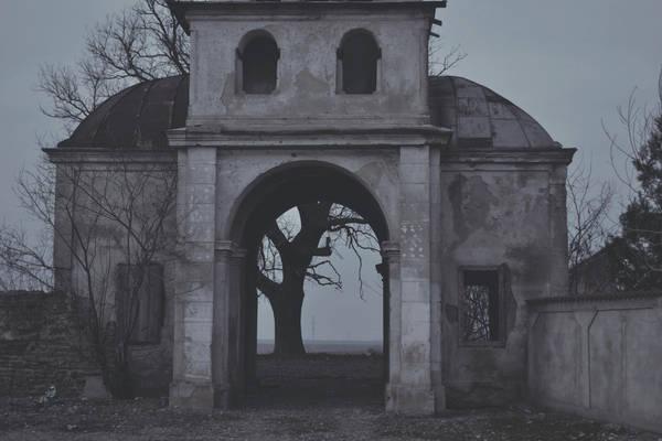 Returning to ashes by AlexandrinaAna