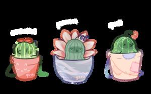 bird cactipums adopts ota ! 2/3 open by yuesli