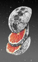 Lunar fruit by jp-ormiston