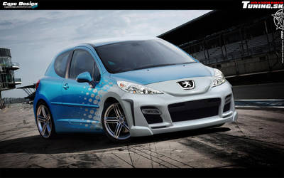 Peugeot 207 by CypoDesign