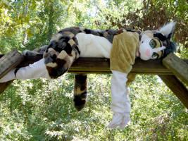 Calico cat fursuit by pariahpoet