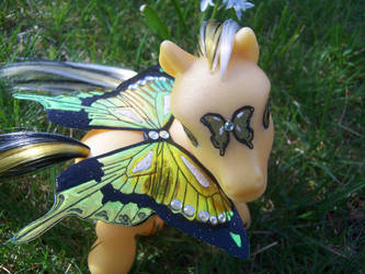 Papillon Jaune by MBryan