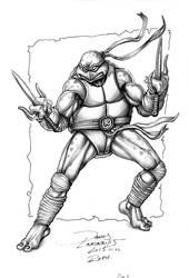 Raphael (TMNT) (2 of 8) by jameslink