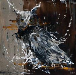 Long-eared Owl by RatatoskAS