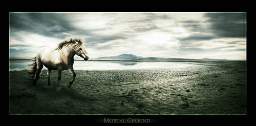Mortal Ground by kaons