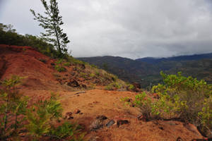Kauai Red Bluff Stock by kaons