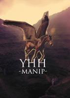 YHH Pegasus Manip by kaons