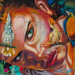 'Fauna Tropical' by MarioGasca