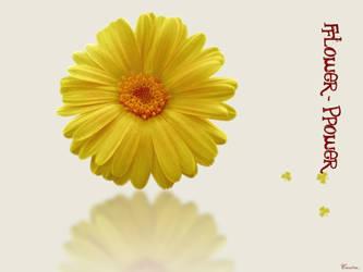 flower-power by dusky-fairy