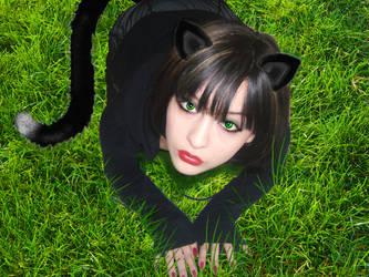 Kitten by ZaaraXAntoinette