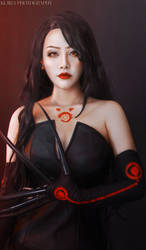 Fullmetal Alchemist COSPLAY by Artemislyna