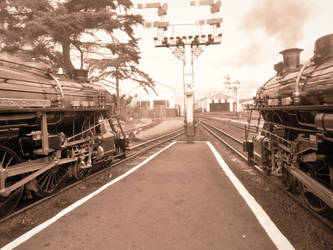 Side By Side at New Romney by FFDP-Neko