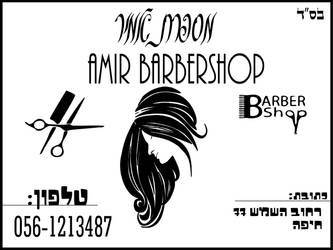 amircard Business Card 1 by A-L2kPlus