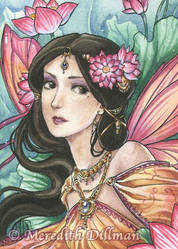 Lotus Fairy by MeredithDillman