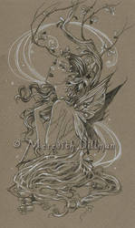 Fae drawing 2 by MeredithDillman