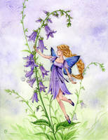 Fairy - Creeping Bellflower by MeredithDillman
