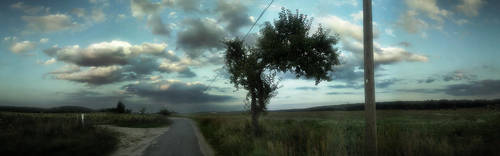 Field Panorama by Danman87