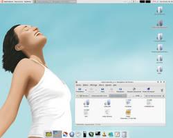 Vista-Inspirate 1.0 Desktop by sa-ki