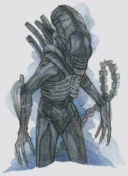 Commission : Alien by DaryaSpace