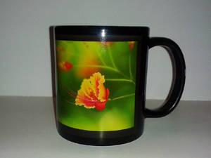 Mug5-1 by Gee-X