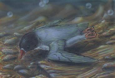 sea shellpecker from neocene by AlexSone