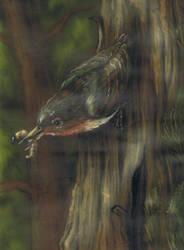 bark-climber from neocene by AlexSone