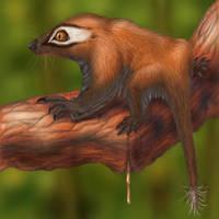 Gliding cynodont by AlexSone